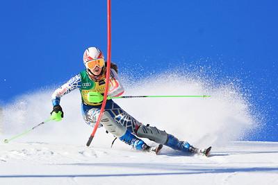 Lisa Schroer Women's Slalom 2013 Nature Valley U.S. Alpine Championships at Squaw Valley, California Photo: Sarah Brunson/U.S. Ski Team