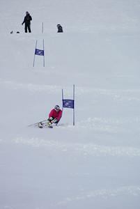 Lindsey Vonn arcs a giant slalom turn at Mt. Hutt (Mt. Hutt)