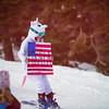 Slalom<br /> 2017 Audi FIS Alpine World Cup at Squaw Valley, CA<br /> Photo © Jon Margolis