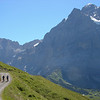 Above Grindelwald, on the trail between Grosse Scheidegg and First.