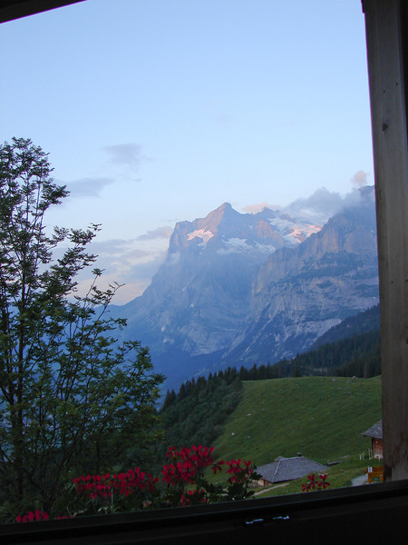 View of the Wetterhorn from Alpiglen.