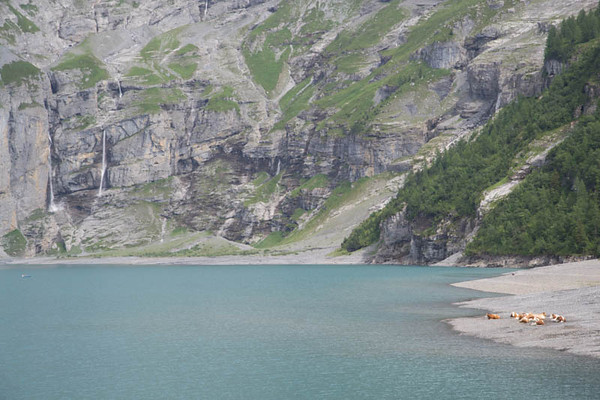 Swiss locals having a rest at Oeschinensee's shore.