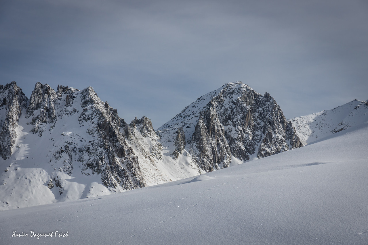 Frish snow on the Stegenhorn