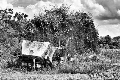 """©Al Gallia; 'End of the Road'; Rusty junk truck abandoned and forgotten years ago, west of St Martinsville, Louisiana. """"...I saw her there the other day, Left there to just rot 'n rust away, Setting alone under a sad old tree, She is back in a field; hard to see..."""" Excerpt from 'A Rusty Old Truck' by Donald Bennett"""