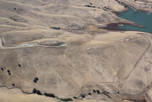 Altamont Pass Windfarms