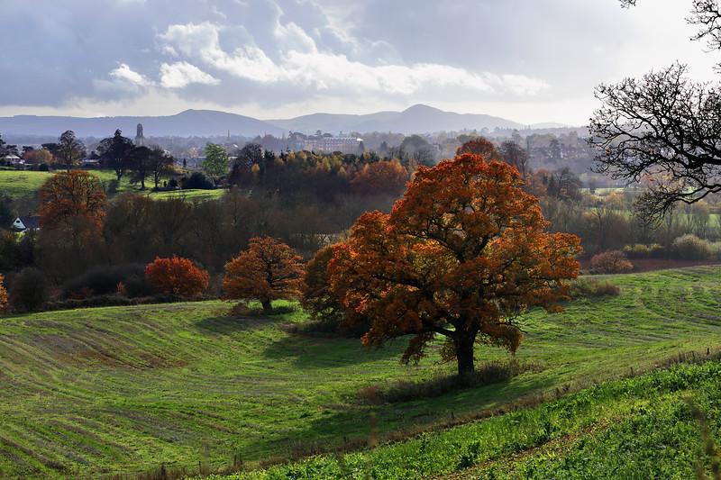 A view from Hencote, Shrewsbury.