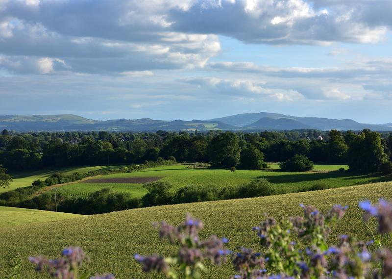 View from Hencote, Shrewsbury.