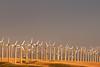 First Light on Windmills, Near Livermore CA