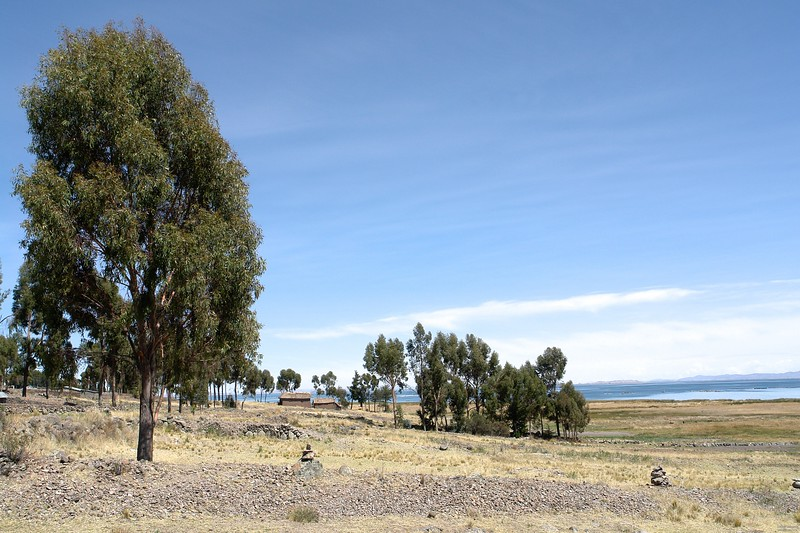 View from the hotel towards lake Titicaca.