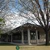Alumni Open House 3 29 18-45WM