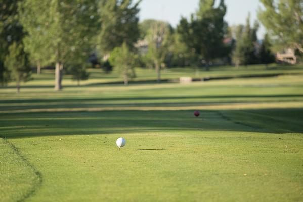 2015  Alumni Golf Classic