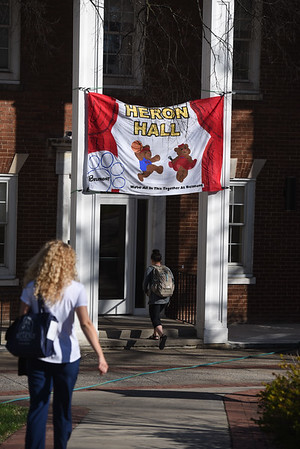 Homecoming banners