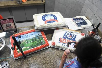 printed cake