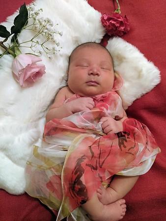 Mia Rose Hayes