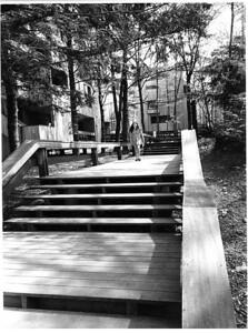 6 - boardwalk