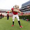 Description: Freshman Welcome Class of 2019<br /> Date of Photo: 8/16/2015<br /> Credit: Andrew Davis Tucker, University of Georgia<br /> Photographic Services File: 32980-241<br /> <br /> The University of Georgia owns the rights to this image or has permission to redistribute this image. Permission to use this image is granted for internal UGA publications and promotions and for a one-time use for news purposes. Separate permission and payment of a fee is required to use any image for any other purpose, including but not limited to, commercial, advertising or illustrative purposes. Unauthorized use of any of these copyrighted photographs is unlawful and may subject the user to civil and criminal penalties. Possession of this image signifies agreement to all the terms described above.