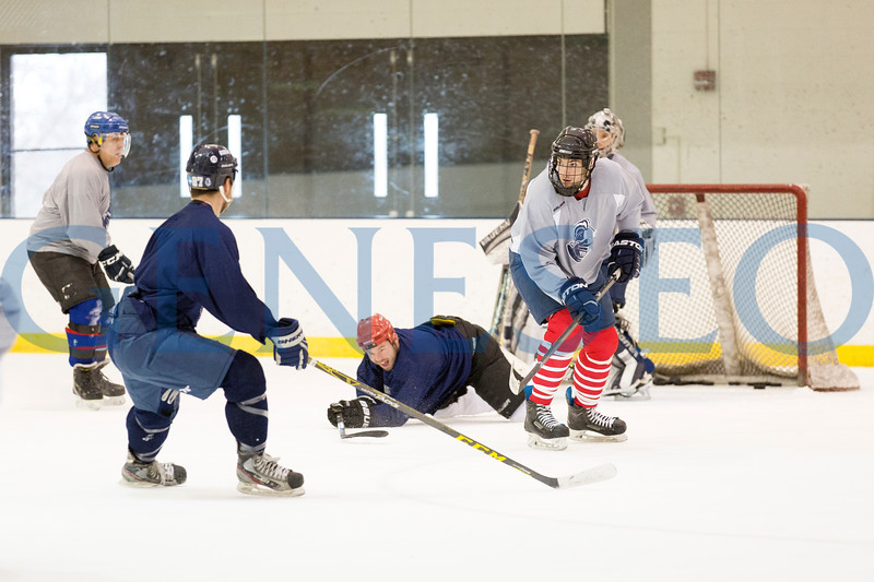 Spring Winter 2018 Alumni Hockey Game photos by Annalee Bainnson