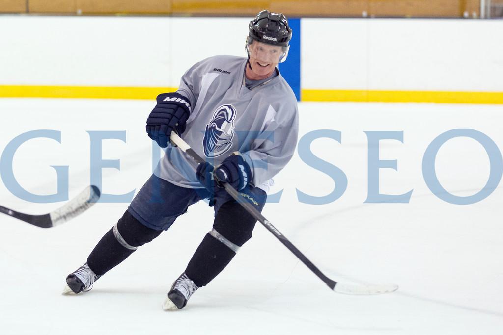 Spring Winter 2018 Alumni Hockey Game photos by Annalee Bainnson