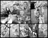 Collage1finalbw