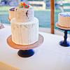 Cake_0006