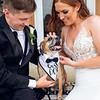 Amanda and Mathew Wedding 0676
