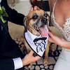 Amanda and Mathew Wedding 0677