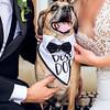 Amanda and Mathew Wedding 0673