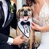 Amanda and Mathew Wedding 0674