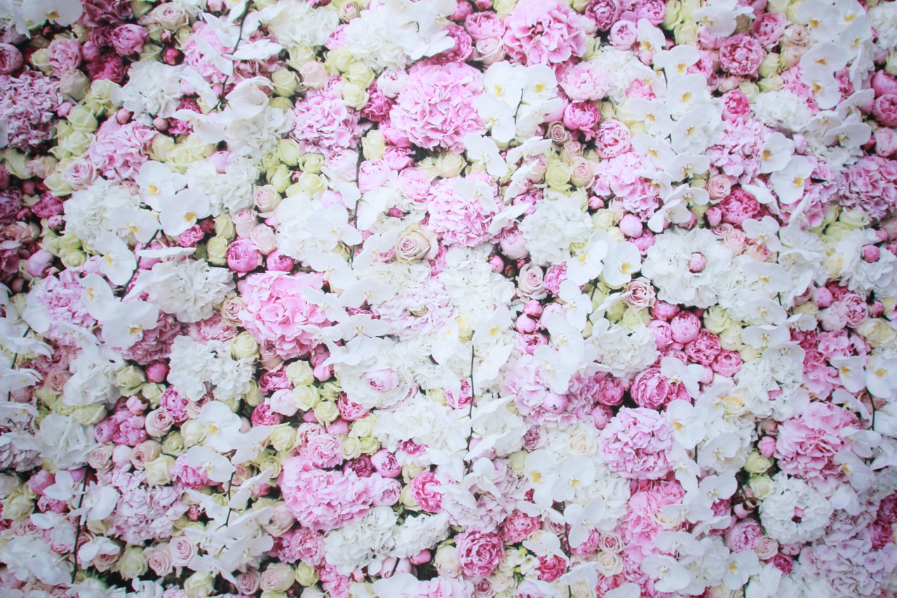 Floral pattern backdrop (Backdrop is 10 ft wide)