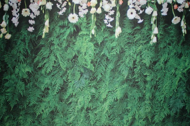 Green fern backdrop (9 ft wide)