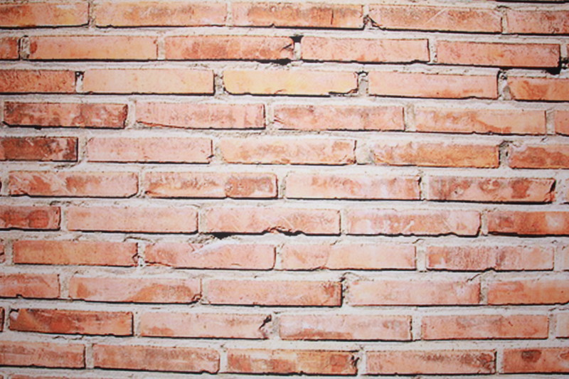 Brown brick wall backdrop (Backdrop is 10 ft wide)