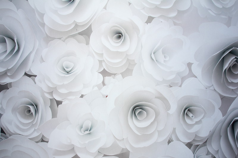 White flower backdrop (9 ft wide)