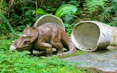Baby Triceratops First View of the World