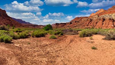 Sunny day in the desert