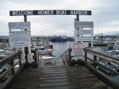 Homer Alaska Photos - Videos 35