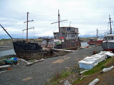 Homer Alaska Photos - Videos 26