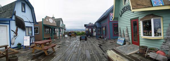 Homer Alaska Photos - Videos 30