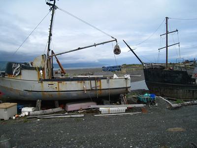 Homer Alaska Photos - Videos 25