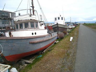 Homer Alaska Photos - Videos 27