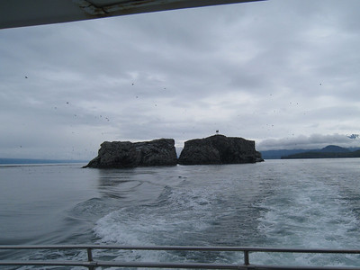 Homer to Seldovia Alaska Photos 8