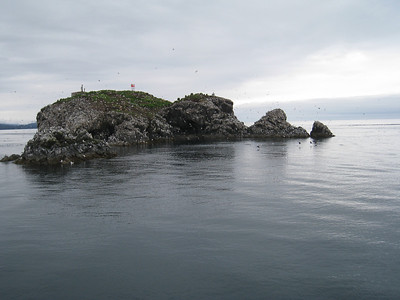 Homer to Seldovia Alaska Photos 5