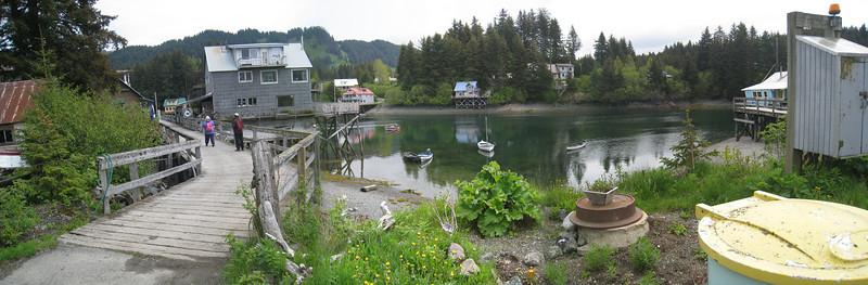 Homer to Seldovia Alaska Photos 25