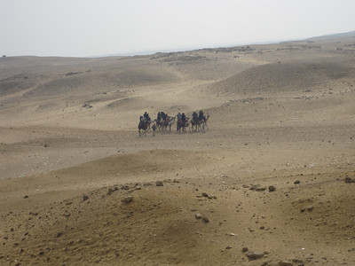 Egypt_Dec2008_009