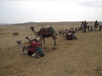 Egypt_Dec2008_017
