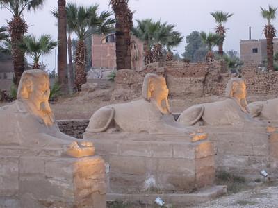 Egypt_Dec2008_191