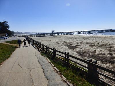 New Brighton Beach 11:3:2013  12
