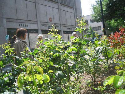 Portland Tour Gardens Friends 28