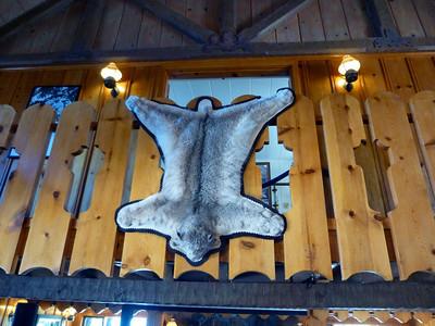 Thunderbird Lodge 10