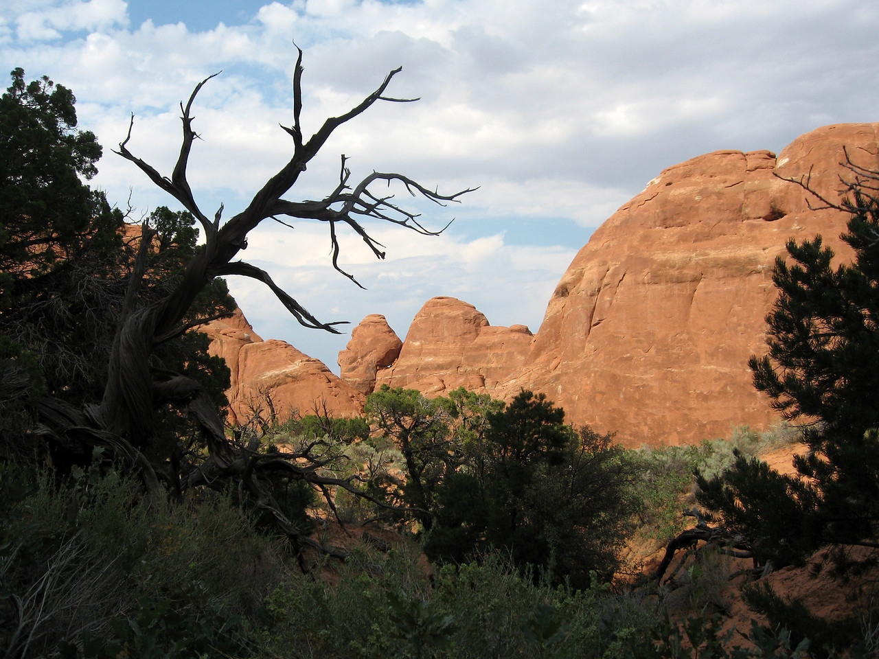 Arches National Park 2006 11