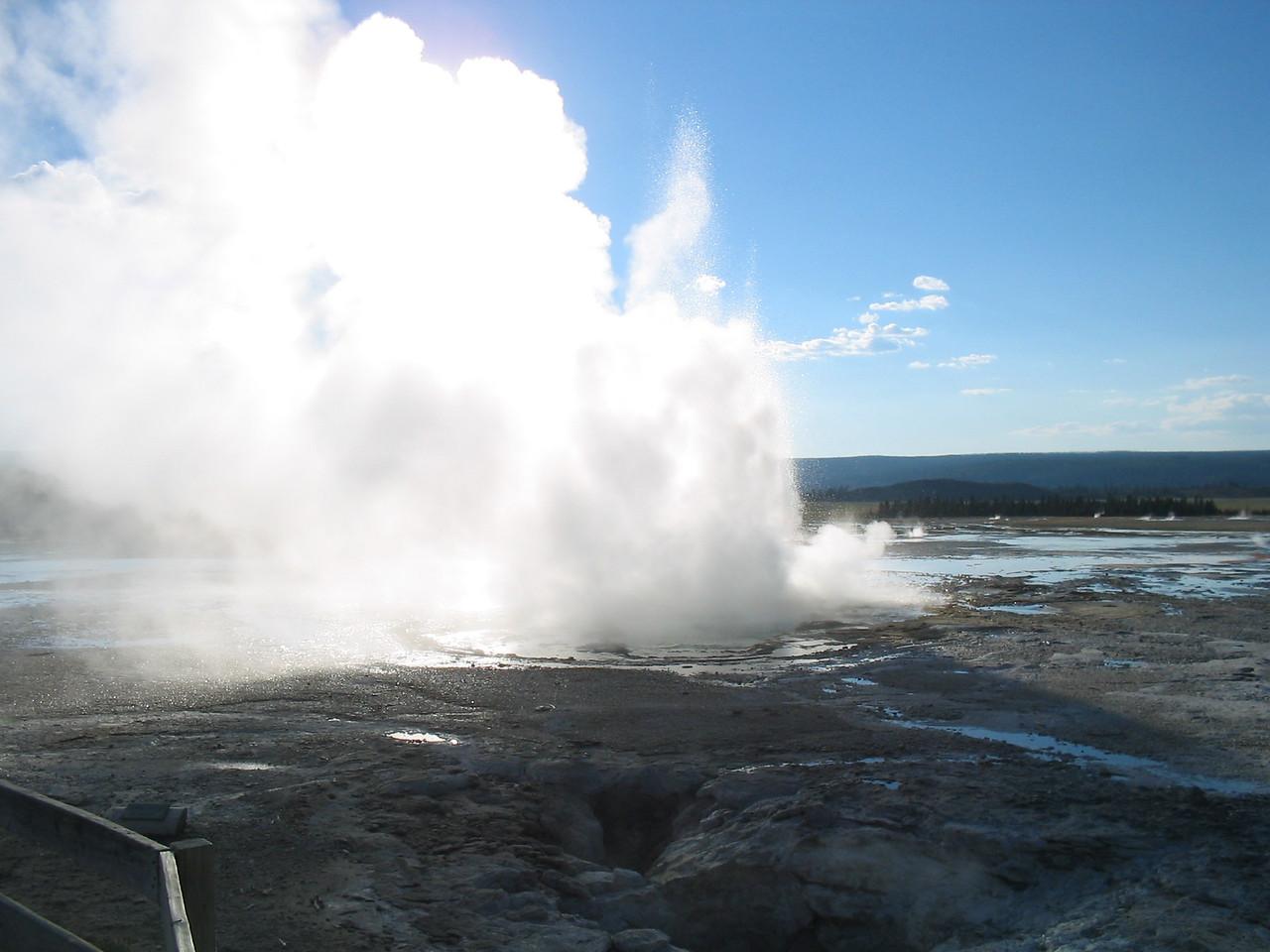 Yellowstones's Best029